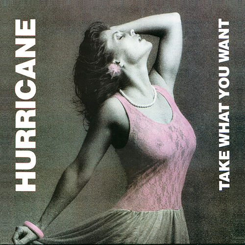 Play & Download Take What You Want by Hurricane | Napster