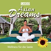 Play & Download Asian Dreams - Entspannungsmusik für Tai Chi, Joga, Qi Gong und Meditation (GEMA-frei) by Largo | Napster