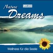 Nature Dreams - Entspannungsmusik und Naturgeräusche (GEMA-frei) by Largo