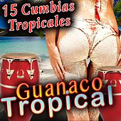 15 Cumbias Tropicales Guanaco Tropical by Various Artists