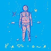Passiona by The Smith Street Band