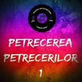 Petrecerea Petrecerilor by Various Artists