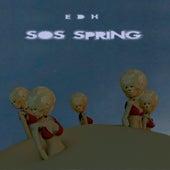 SOS Spring by Edh