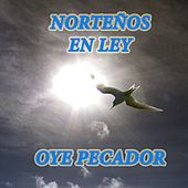 Norteños en Ley: Oye Pecador by Various Artists