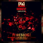 Florescence - EP by Various Artists
