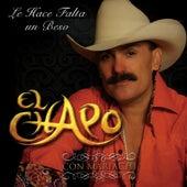 Le Hace Falta Un Beso by El Chapo De Sinaloa