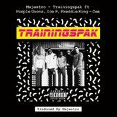 Trainingspak by Majestro