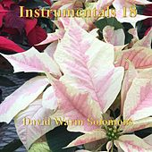 Instrumentals 18 by David Warin Solomons