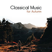 Classical Music for Autumn de Relaxing Music Therapy Consort