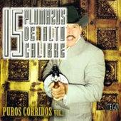 15 Plomazos de Alto Calibre, Puros Corridos, Vol. 1 by Various Artists