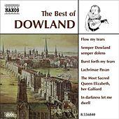 Dowland (The Best Of) by Various Artists