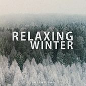 Relaxing Winter, Vol. 1 (Wonderful Calm & Chilled Electronic Music) by Various Artists