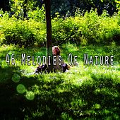46 Melodies Of Nature by Meditation Music Zone