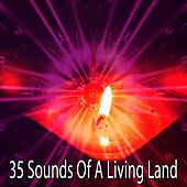 35 Sounds Of A Living Land by Meditation Music Zone