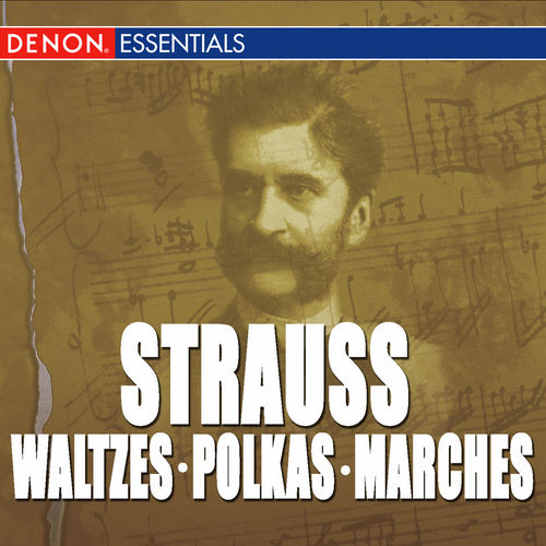 Play & Download Great Strauss Waltzes, Polkas & Marches: Carl Michalski & The Viennese Folk Opera Orchestra by Orchestra of the Viennese Volksoper | Napster