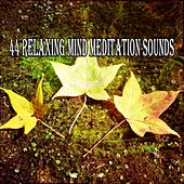 44 Relaxing Mind Meditation Sounds de Musica Relajante