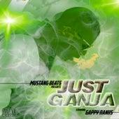 Just Ganja by Gappy Ranks