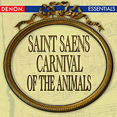 Saint-Saens: Carnival of the Animals by South German Philharmonic Orchestra