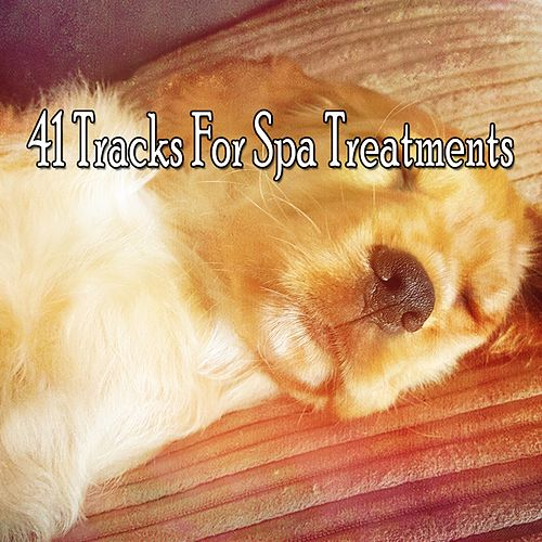 41 Tracks For Spa Treatments by S.P.A