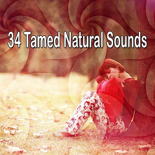 34 Tamed Natural Sounds de Baby Sleep Sleep
