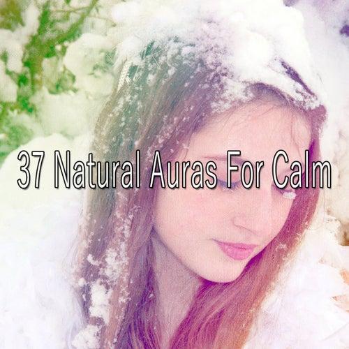 37 Natural Auras For Calm de Relajacion Del Mar