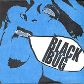 I Don't Like You by Black Bug