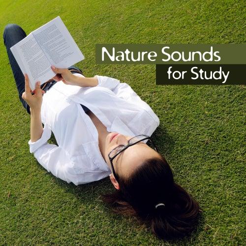 Studying Music: