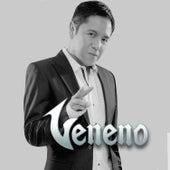 Grandes Exitos by Grupo Veneno