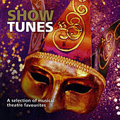 Show Tunes by Various Artists
