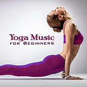 Yoga Music for Beginners by Reiki Tribe