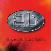Slave Labour by Slave Labour