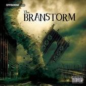 The Branstorm by DJ Brans