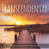 Transcendental Ambience: Chilled and Relaxing Music Playlist by Various Artists