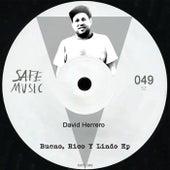 Bueno, Rico Y Lindo - Single by David Herrero