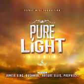Pure Light Riddim by Various Artists