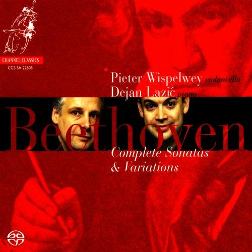 Beethoven: Complete Sonatas & Variations by Pieter Wispelwey