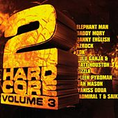 2hardcore Vol 3 by Various Artists
