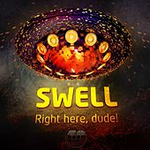Right Here, Dude! - Single by Swell