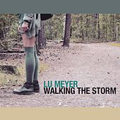 Walking the Storm by Lu Meyer