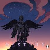 Destiny by Michael White