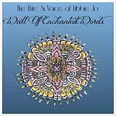 The Flute & Voice of Libbie Jo: Wall of Enchanted Words by Libbie Jo Snyder