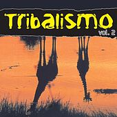 Tribalismo Vol. 2 by Various Artists