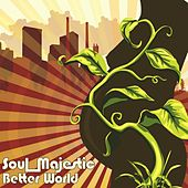 Play & Download Better World by Soul Majestic | Napster