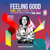 Feeling Good - The Supreme Sound Of Producer Bob Shad by Various Artists