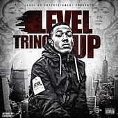 Level Up by Trino