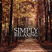 Simply Relaxing, Vol. 4 (Wonderful Smooth & Calm Electronic Music For Yoga, Spa & Wellness) by Various Artists