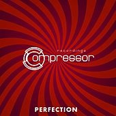 Perfection - EP by Various Artists