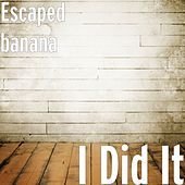 I Did It by Escaped Banana