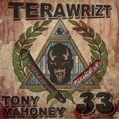 33 by Terawrizt