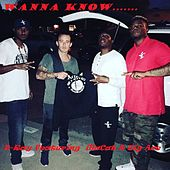 Wanna Know (feat. Big Ace & illaCat) by D-Ray